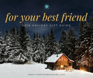 for-your-best-friend-holiday-gift-guide-2016