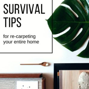 SURVIVAL TIPS FOR RE-CARPETING AN ENTIRE HOUSE